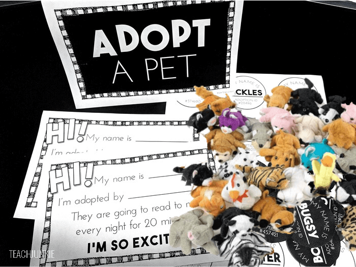 Adopt-a-pet-with-mini-plush-animals-to-get-kids-reading